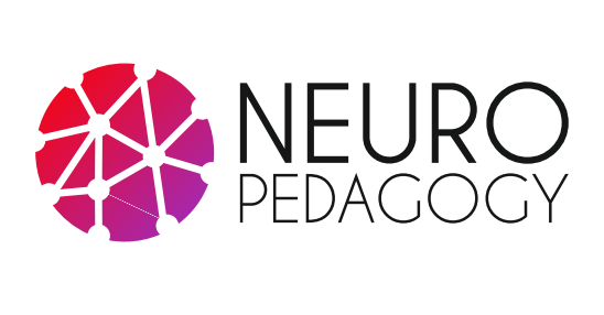 FUE-UJI IS A PARTNER IN AN ERASMUS+ PROJECT ON TRAINING THROUGH NEUROSCIENCE